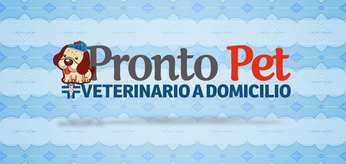 Veterinario a domicilio